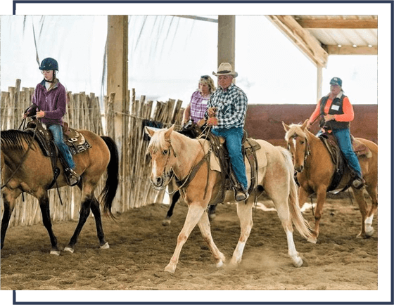 progressive horsemanship training