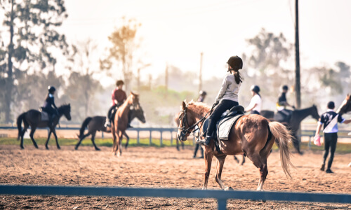 Young rider on horse in class